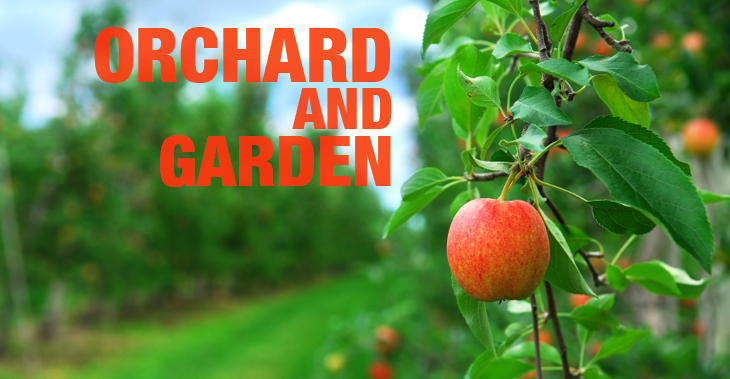 Orchard and Garden