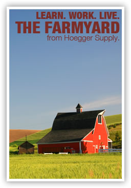 The Hoegger Farmyard