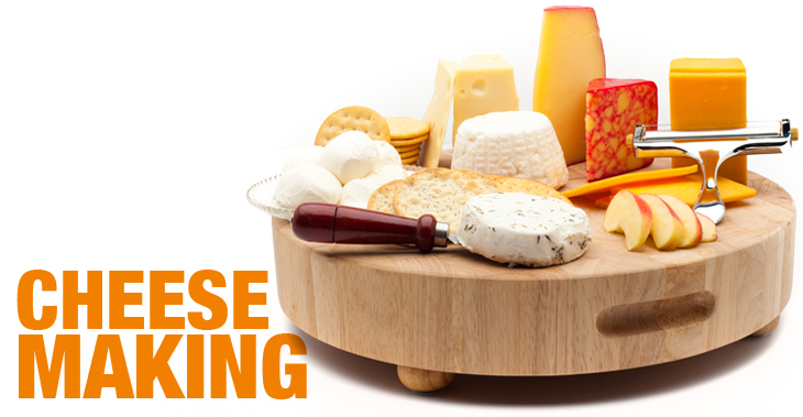 Atlanta Cheesemaking Class with Mary Jane Toth